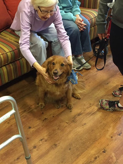 Pet Therapy at Auburn Heights