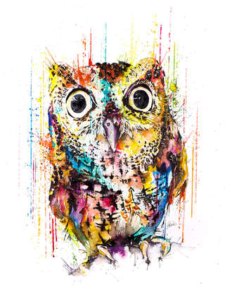 TINY OWL - RAINING COLOURS *Limited Edition Giclée Print on Watercolour Paper - 300gsm.