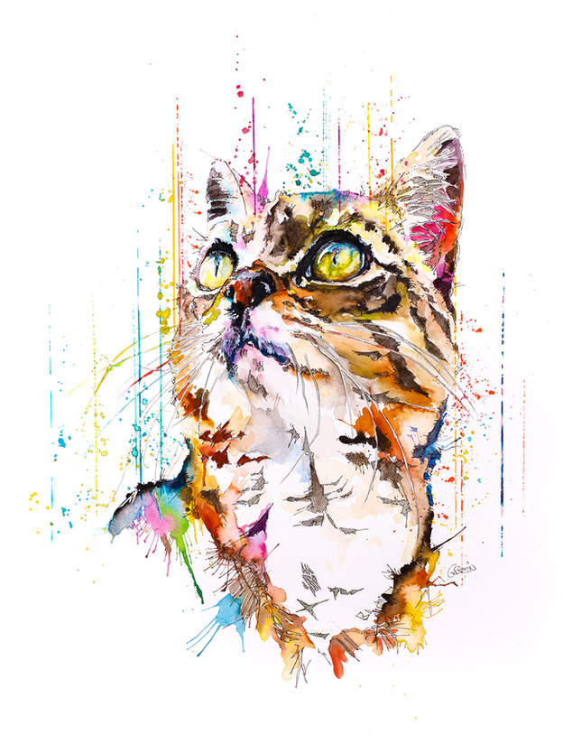 CAT - RAINING COLOURS *Limited Edition Giclée Print on Watercolour Paper - 300gsm.