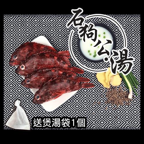 漁家 - 【魚欄直送-煲湯魚】石狗公 400g+ (急凍)
