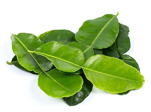lime leaf paprika online shop.jpg