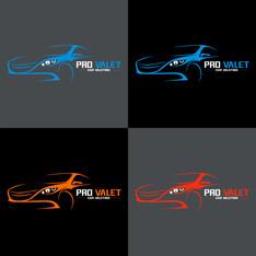 Pro Valet - Logo Design