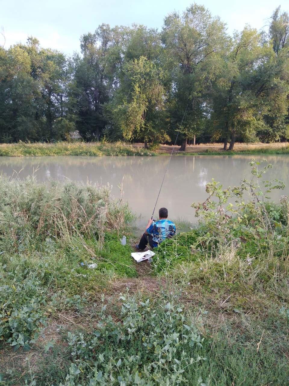 Рыбное озеро в Бишкеке