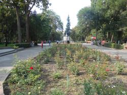 Клумба в парке Бишкека