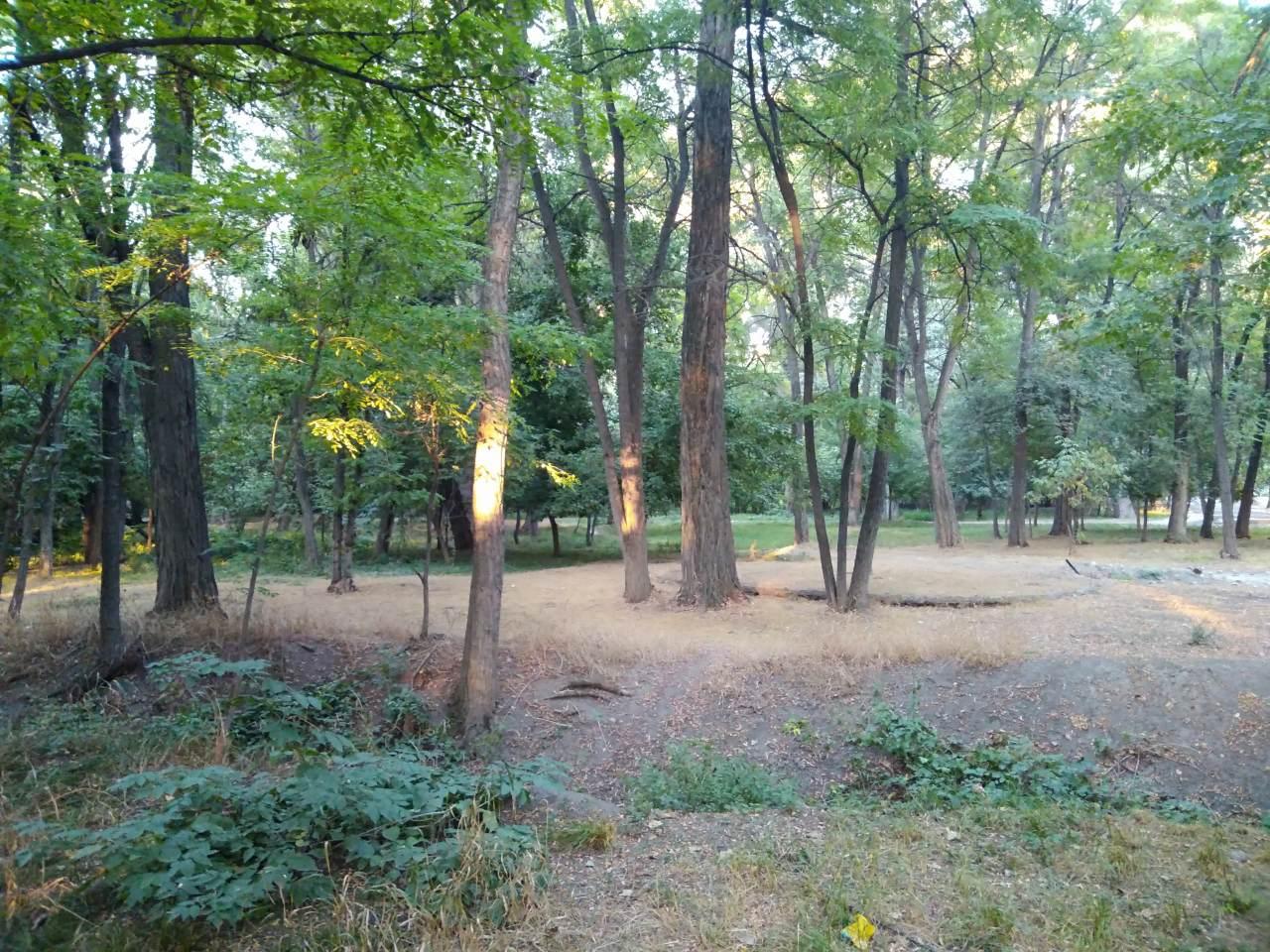Парк «Аркан Токой» Бишкеке