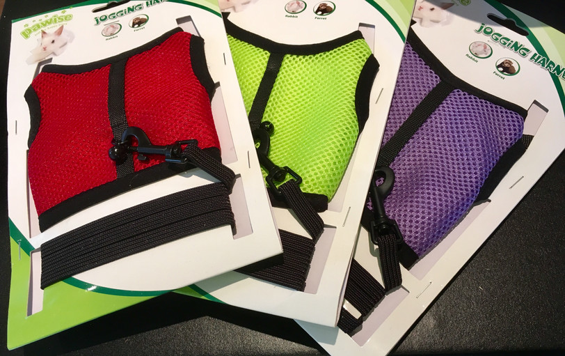 Jogging Harness with Leash