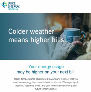 Duke Energy Reports Record Usage and Higher Bills for January 2018