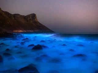 Bioluminescence near Kogelbay