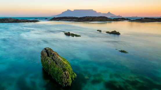 Table Mountain aqua/green rock
