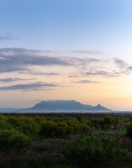 Table Mountain behind green fields