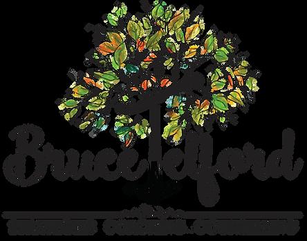 Bruce Telford Mental Health, Strategies, Coaching, Counselling, bruce telford christchurch