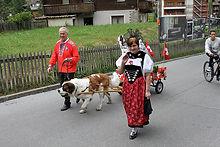 fz15.jpg