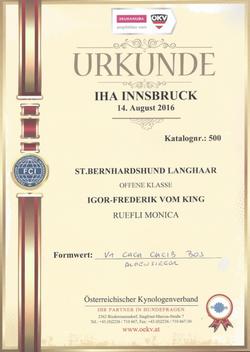 Urkunde Insbruck