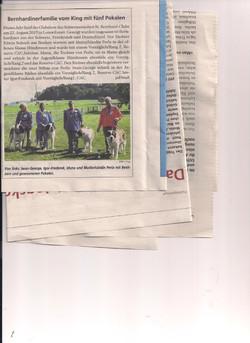 Zeitungsausschnitt 2
