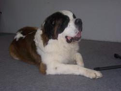 Igor mit 3 Jahren