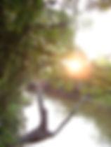 paisagem-rio.jpg