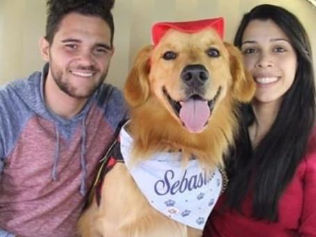 Conversa com o Sebastião: o Cão Terapeuta