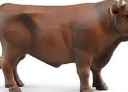 BR 1:16 Bull - Standing