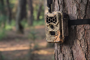 WildGuarder-4G-trail-camera-1.jpg