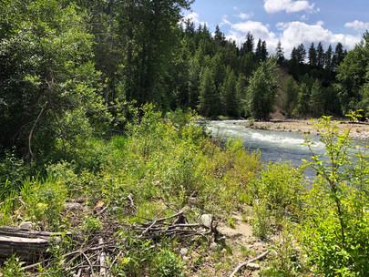 River15.jpeg