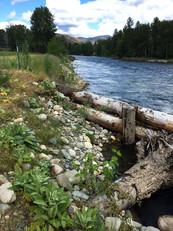 River8.jpeg