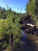 River16.jpeg