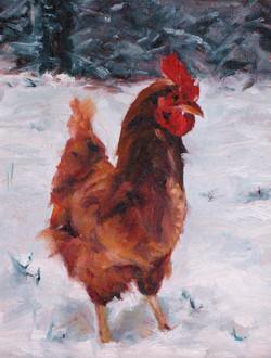 SOLD – Alpha Chicken