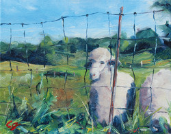 SOLD - The Grass Is Greener