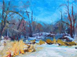 Icy Marshside
