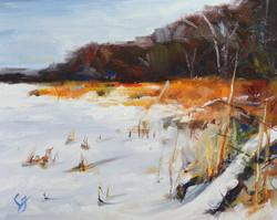 SOLD - Winter Shore