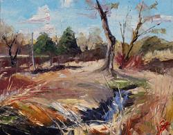 SOLD - Wetland Waterway