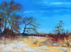 Ripley Marsh