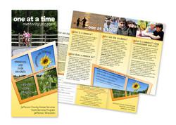 Mentor Brochure