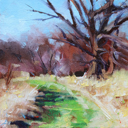 Oak Path