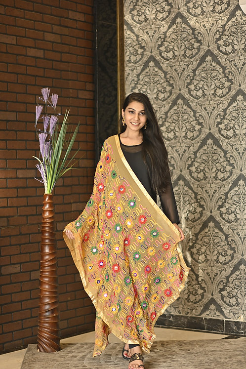 Women's Colorful Heavy Hand Embroidered Cotton Dupatta