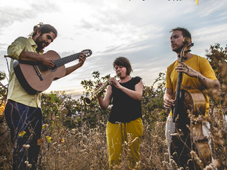 Trio In Uno - Ipê
