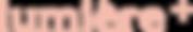 ルミエプラス ロゴ(正規).png