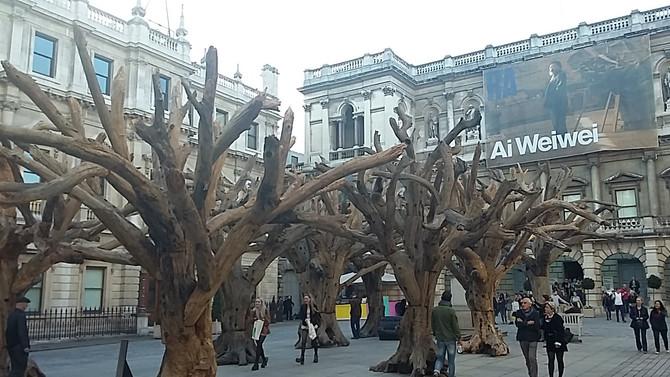 Tree : Ai Weiwei