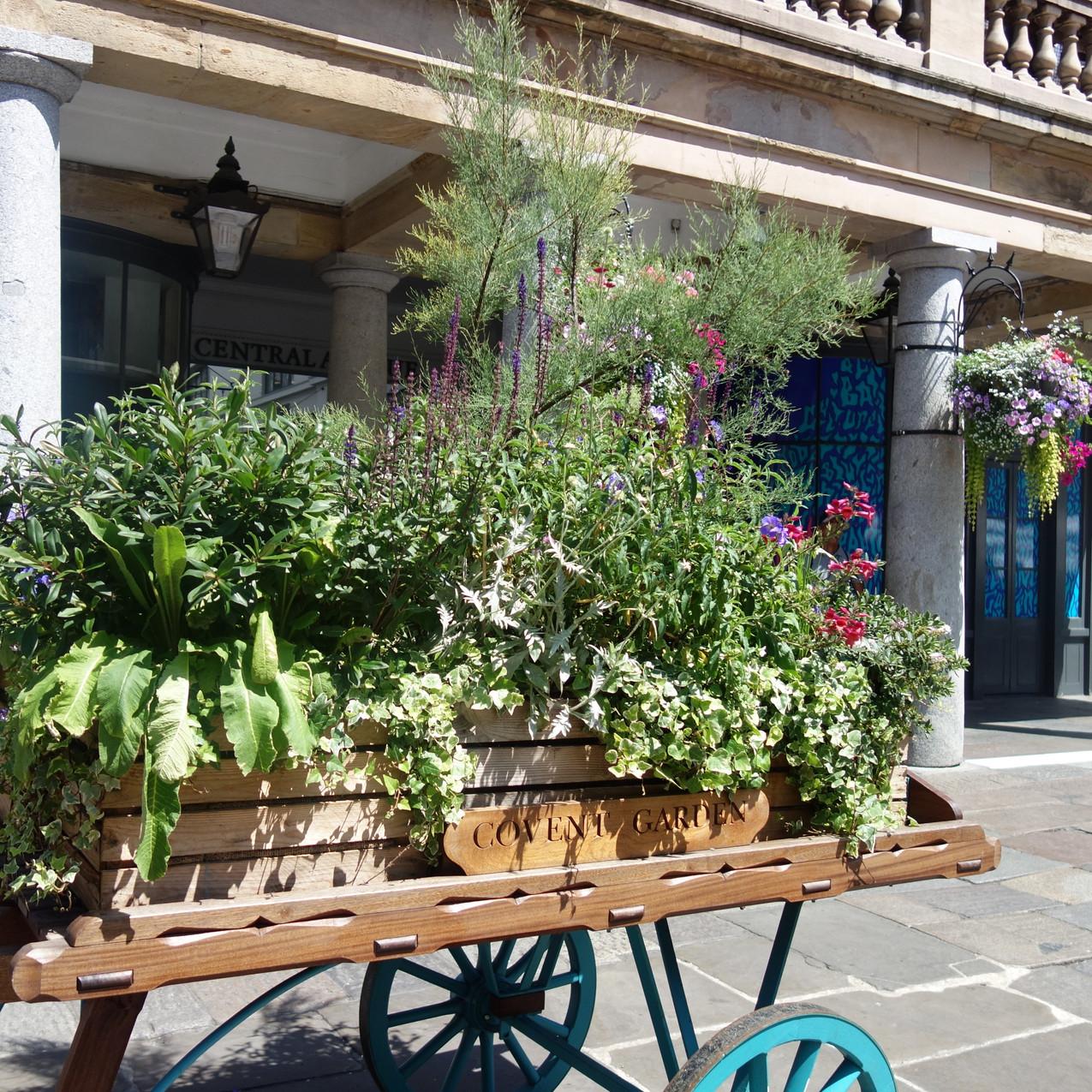 Covent Garden Piazza