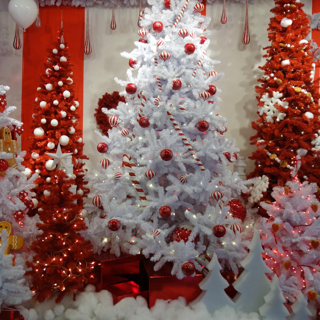 DZD Christmas