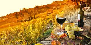 Tour Chianti with driver - Tour Tuscany with Driver - Cellar and Wine Tasting on the selected farms.