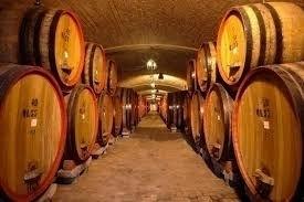 Beni Driver Cellar tour Chianti wine tas