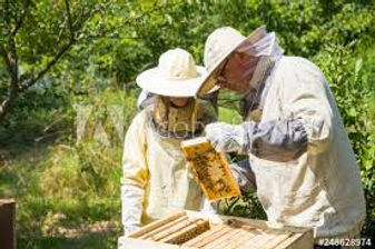 bee keepers.jpg
