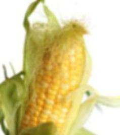 corn silk.jpg