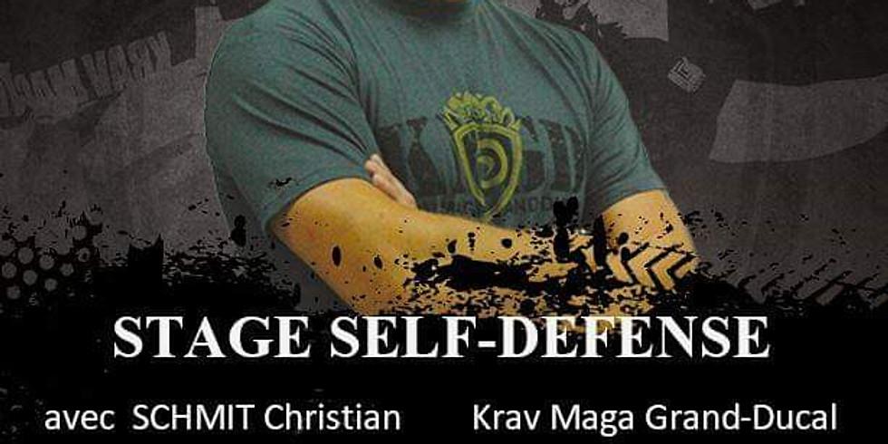 Intensive Krav maga self defense 2H00
