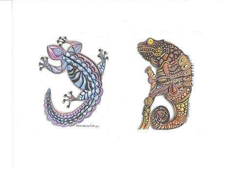 Gecko & Iguana
