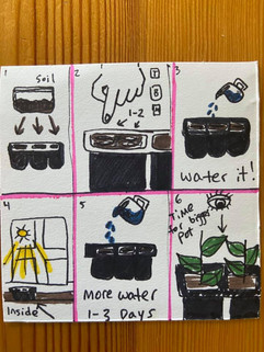 Earth Day Kits