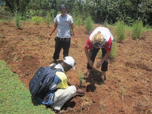 Sarah and Kety bot from SWB supports Fredrick SEP Auditor during tree planting -