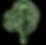 oie_transparent%20(6)_edited.png