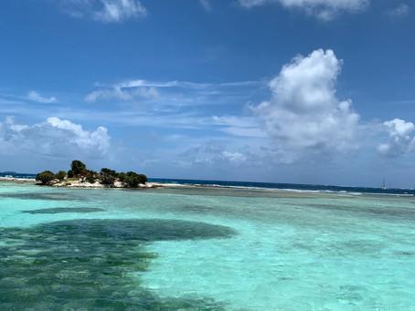 Croisière aux Grenadines